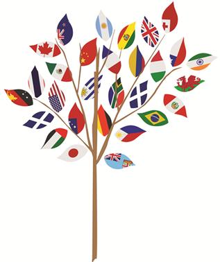 community team flags