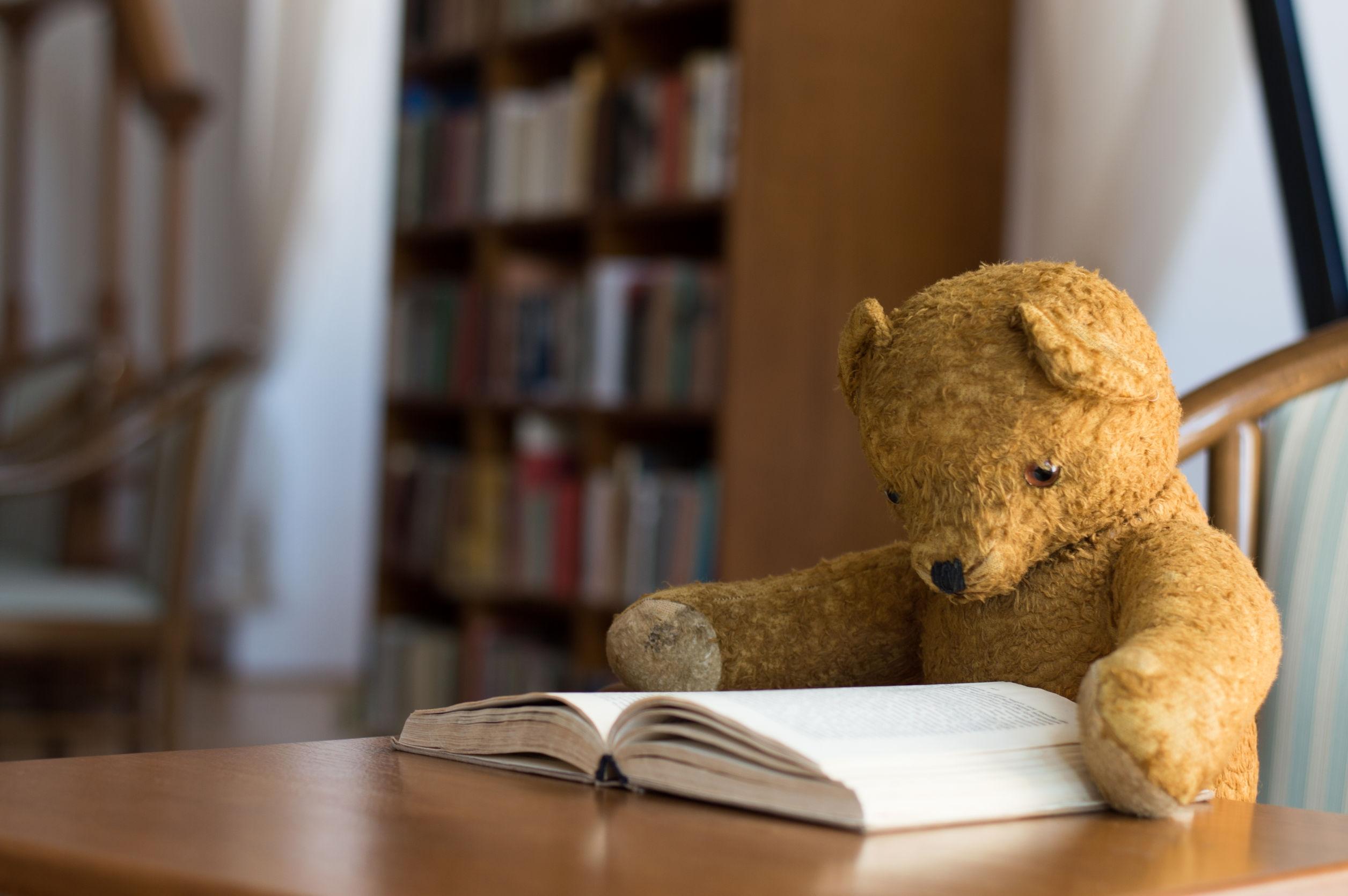 Teddy Bear Reading At A Table
