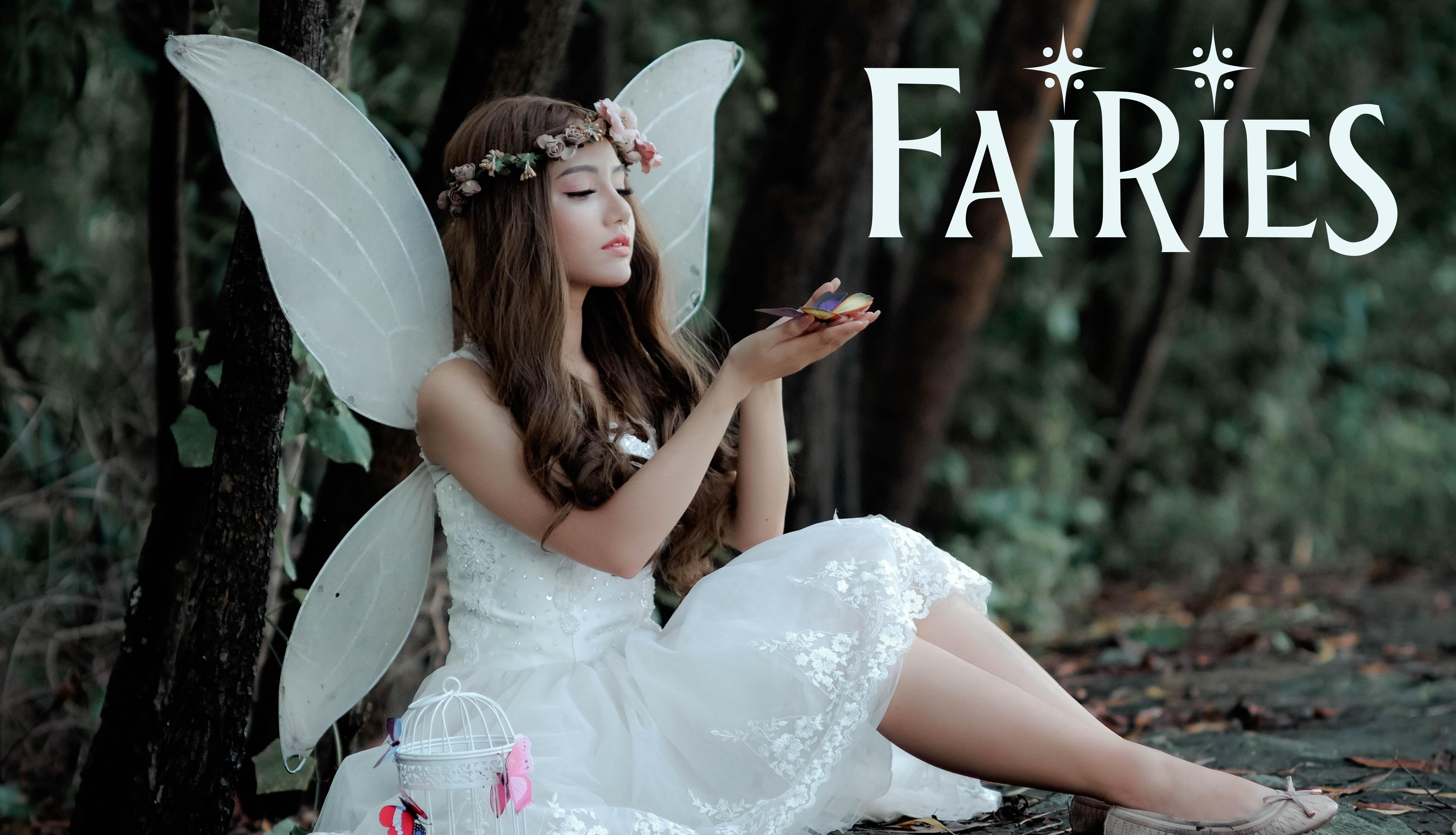 Fairies Genre