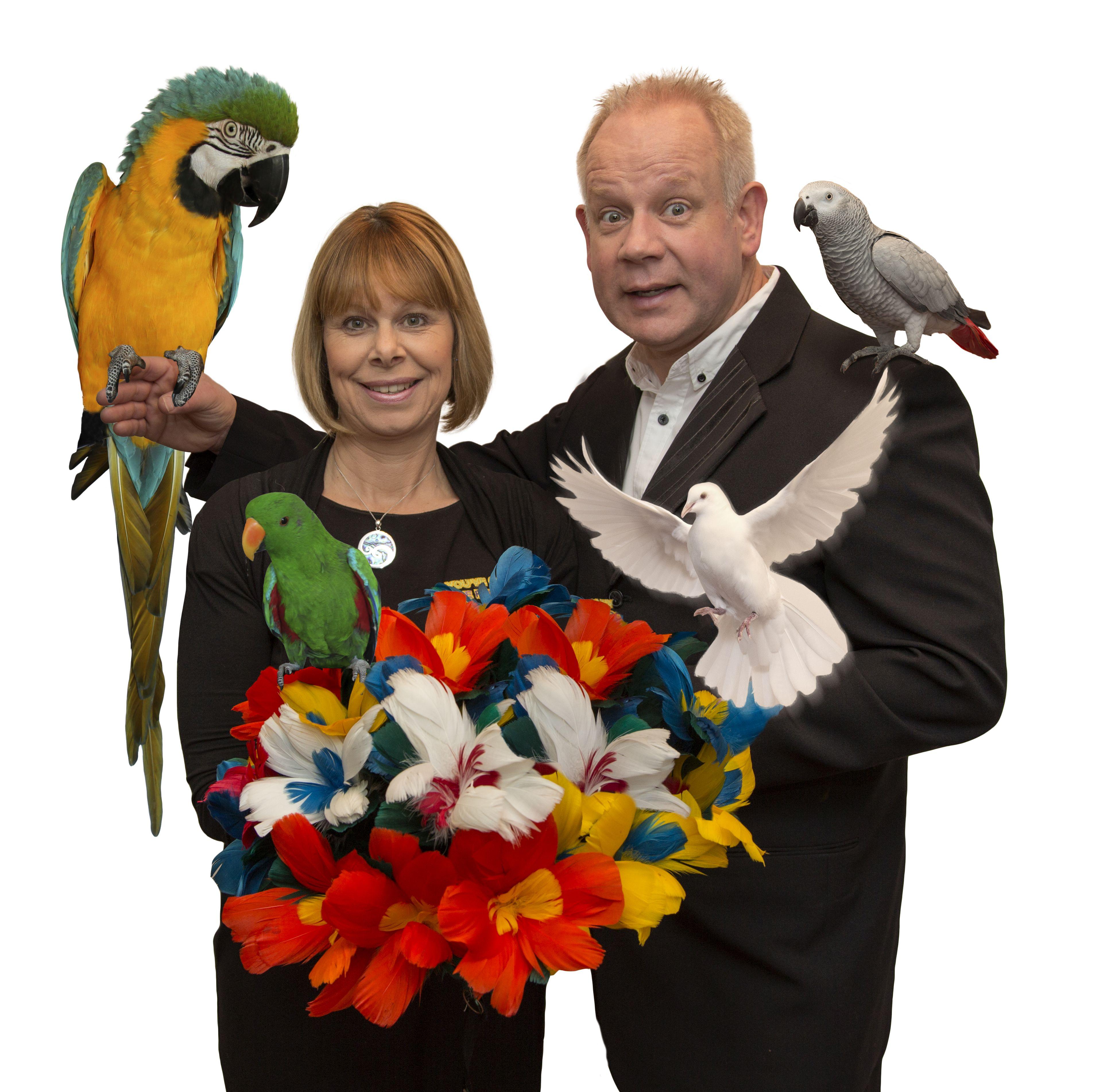 Elgregoe Birds 2014