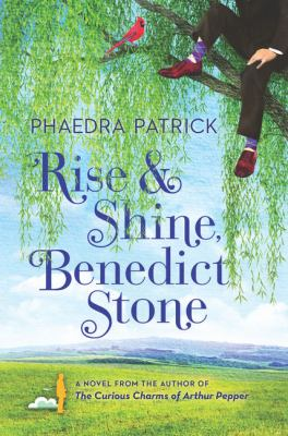 Rise and Shine Benedict Stone cover
